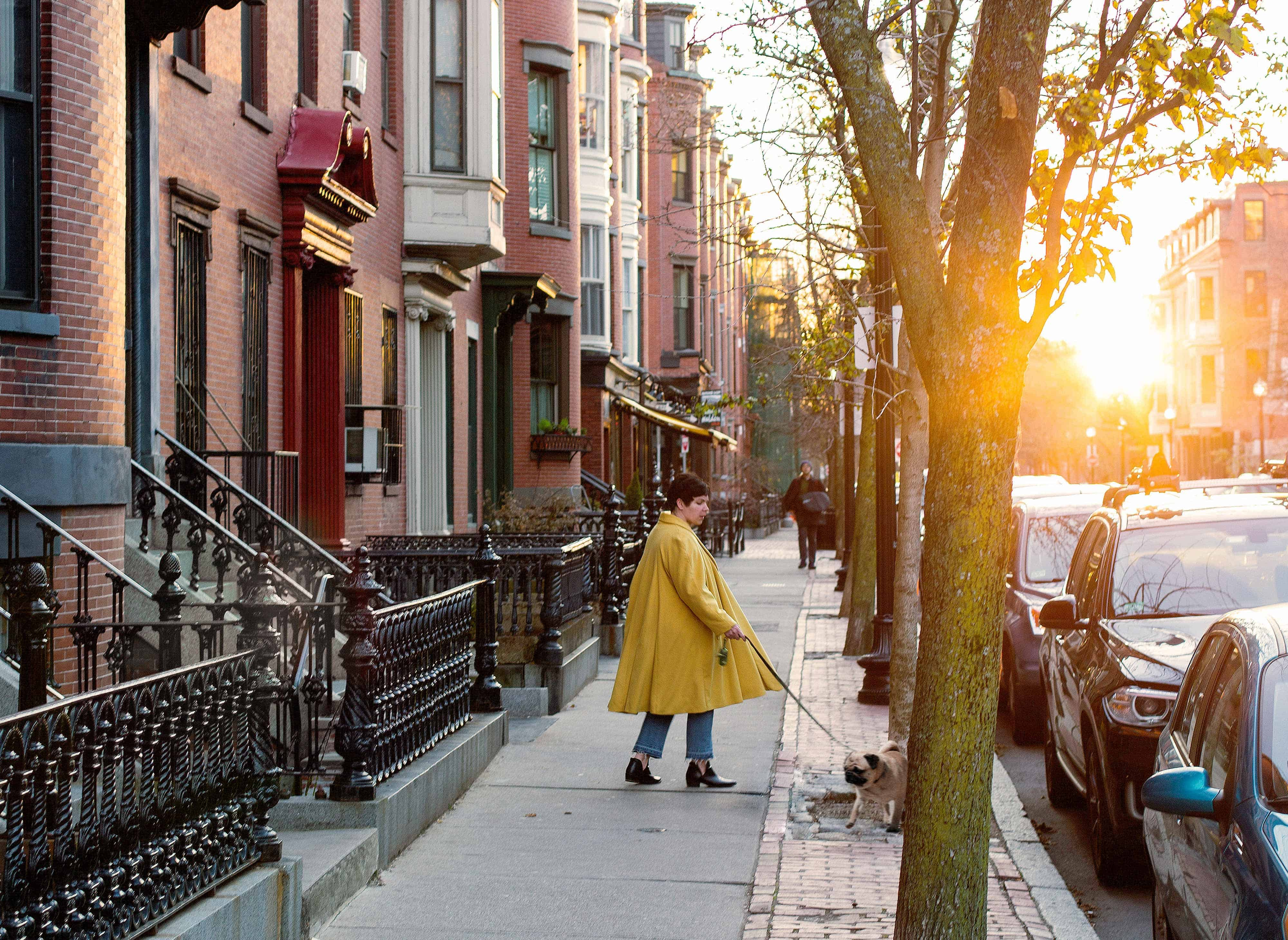 woman walking dog in the city